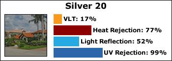silver-20